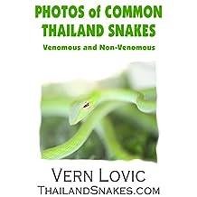 PHOTOS OF COMMON THAILAND SNAKES: Venomous and Non-Venomous Snakes