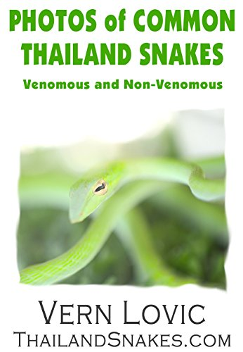 PHOTOS OF COMMON THAILAND SNAKES: Venomous and Non-Venomous Snakes