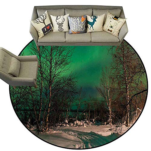 Northern Lights,Round Rugs for Kids Toddlers Living Room D48 Snowy Frozen Road Path Between Leafless Trees Finland Park Contemporary Indoor Area Rugs Jade Green Brown White