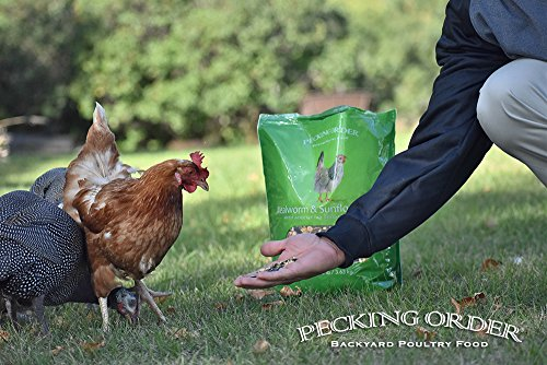 Pecking Order Mealworm & Sunflower Treat, 8 lb by Pecking Order (Image #4)
