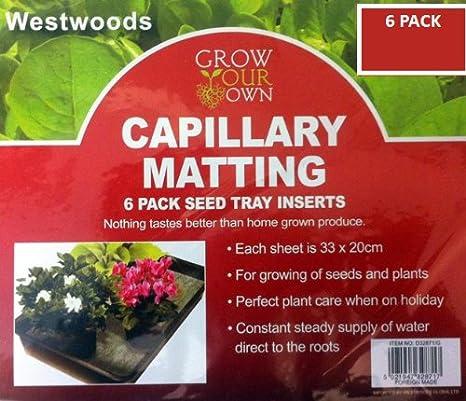 6 Pack capilar (33 x 20 cm alfombrillas. Fibra de efecto invernadero planta riego semillas bandeja Insertar: Amazon.es: Jardín