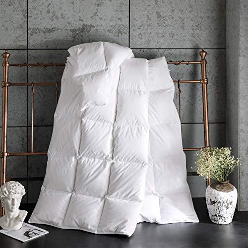 Zingsleep Goose Down Alternative Comforter (Queen 90 x 90 Inch),Ultra Soft Brushed Microfiber, Quilt with Corner Tab for All Season Hypoallergenic Plush Mircofiber Comforter Duvet Insert(Queen S
