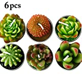 Cactus Candle, Funpa 6Pcs Plant Candles Simulated Succulent Candles Smokeless Tea Candles for Decoration
