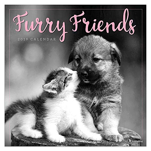 2019 Furry Friends Wall Calendar, Baby Animals by TF Publishing