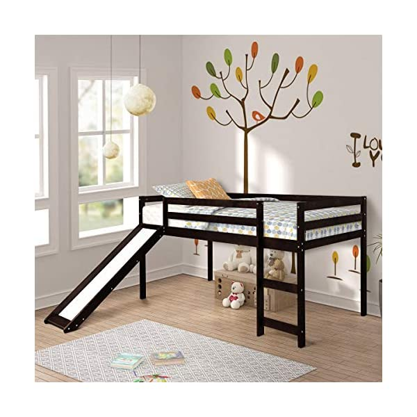 Twin Loft Bed with Slide for Kids/Toddlers, Wood Low Sturdy Loft Bed, No Box Spring Needed 2