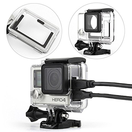 Best Micro 4/3 Camera For Underwater Photography - 2