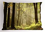 Lunarable Nature Pillow Sham, Misty Autumnal Woods Natural Pathway Serene Morning Sunrise Picture, Decorative Standard King Size Printed Pillowcase, 36 X 20 inches, Yellow Light Green Brown