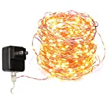 40 Feet Starry String Lights Warm White Color LED's on a Flexible Copper Wire - LED String Light with 120 Individually Mounted LED's-UL Adaptor Included