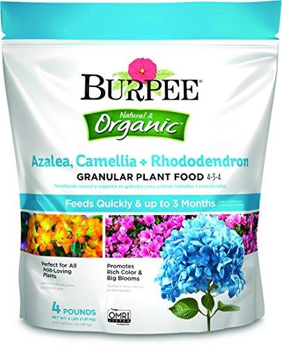 Burpee Organic Azalea Camellia Rhododendron Granular Plant Food, 4 lb 4 lb -