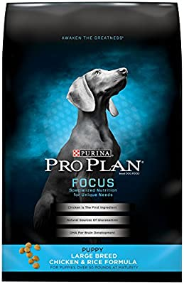 Purina Pro Plan Dry Dog Food, Focus, Puppy Large Breed Chicken & Rice Formula, 34-Pound Bag, Pack of 1