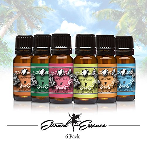 Fragrance Oil - Eternals New Top 6 Pack - Lemongrass, Grapefruit, Eucalyptus, Almond, Pine, Cinnamon, - (Lemongrass Scented Body Scrub)