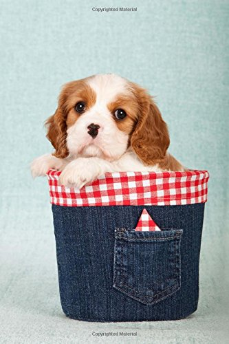 Denim Gingham (Little Cavalier King Charles Spaniel Puppy in a Cute Denim-Covered Box Journal: 150 Page Lined Notebook/Diary)