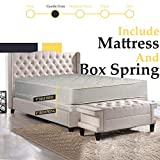 Comfort Bedding Gentle Firm Mattress, Twin, Beige