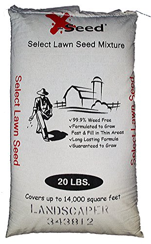 X-Seed Landscaper Mix Seed, 20-Pound -