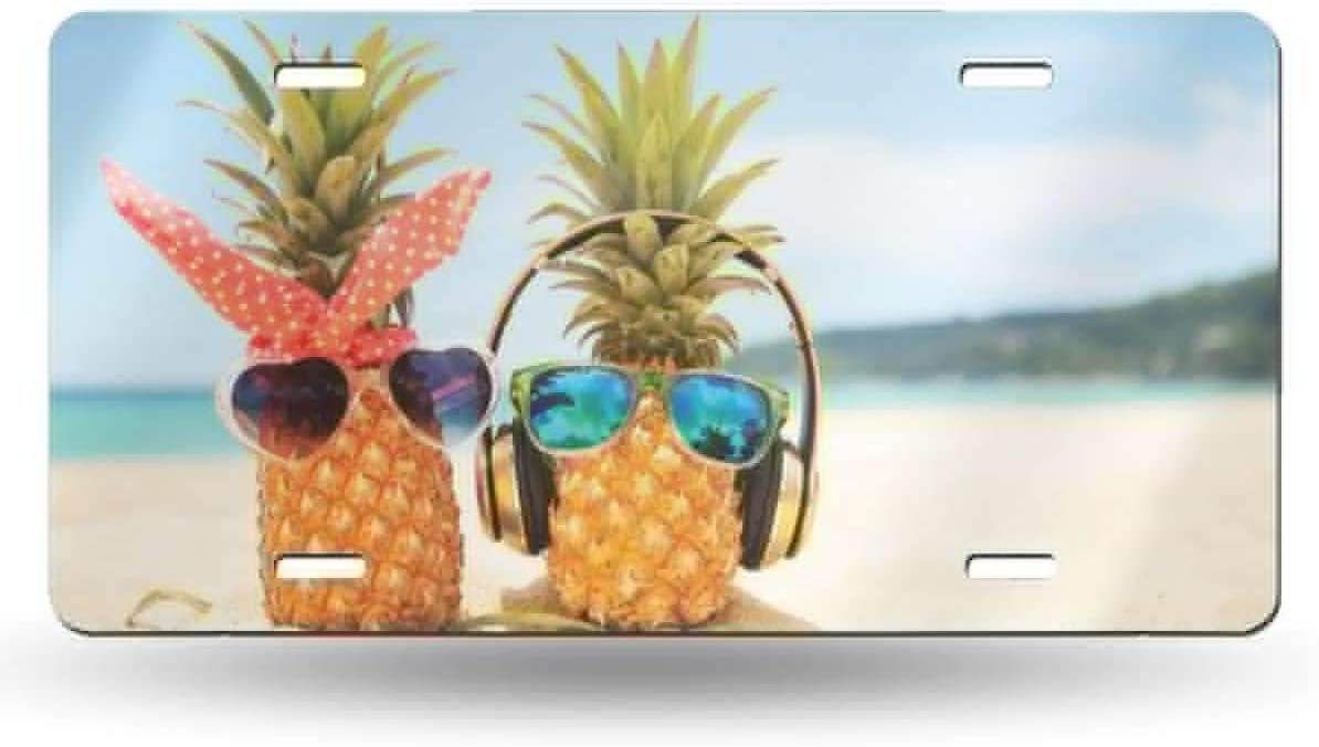 Miniisoul Wall Decoration License Plate Personalized Pink Animal Beach Customized USA Car Tag 6 X 12 Aluminum License Plate Front License Plate