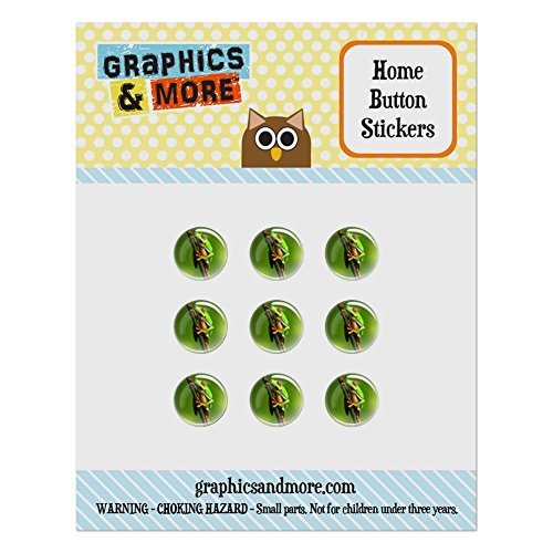 Puffy Frog (Set of 9 Puffy Bubble Home Button Stickers Fit Apple iPod Touch, iPad Air Mini, iPhone 4/4s 5/5c/5s 6/6s Plus - Reptiles Lizards Snakes Frogs - Tree Frog Red-Eyed)