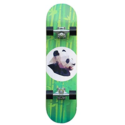 Xinxin Professional-Level Entry Double-Twist Four-Wheel Skateboarding Youth Skateboarding : Sports & Outdoors