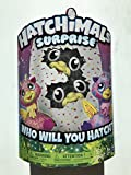 Hatchimals Surprise – Giraven – Hatching Egg with Surprise Twin Interactive Hatchimal Creatures by Spin Master On Sale