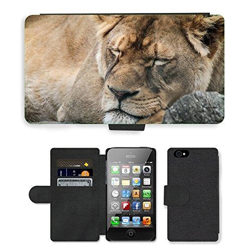 GoGoMobile PU Leather Flip Custodia Protettiva Case Cover per // M00118198 Lion Femme Portrait // Apple iPhone 4 4S 4G