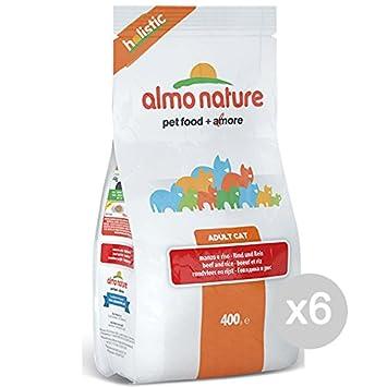Almo nature Juego 6 Gato 608 Croccantini 400 Holistic Manzo Comida para Gatos: Amazon.es: Productos para mascotas