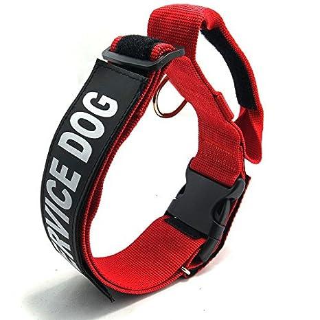 Collar entrenador de castigo para cachorro, con asa, collar ...