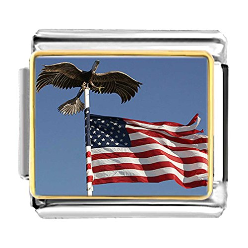 Pugster American Flag - GiftJewelryShop Gold Plated Veterans Freedom bald eagle American flag Bracelet Link Photo Italian Charms