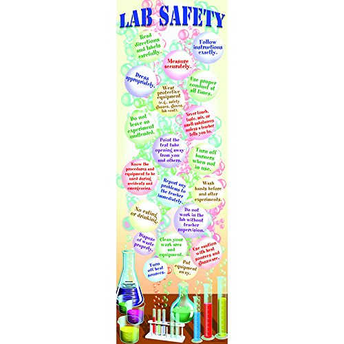 McDonald Publishing Science Lab Safety Colossal Poster