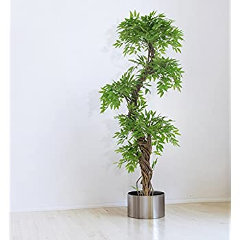 Amazoncom Large Contemporary Artificial Plants and Trees Luxury