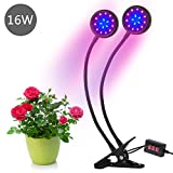 LED Grow Light, Amsuns Clip on Desk Plant Clamp Lamp with 360 Degree Adjustable Gooseneck Timer Control(3H/6H/12H) for Indoor Plants Hydroponic Garden Greenhouse (Dual Head 16W witse (Dual Head 16W)