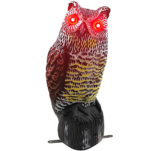 Hausse Solar Powered Fake Owl Decoy Scarecrow Decoy with Flashing Eyes Frightening Sound, Pest Repeller Garden Yard Outdoor Decoration