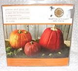 Martha Stewart Holiday Glitter - Pumpkin Glitter and Glue Set
