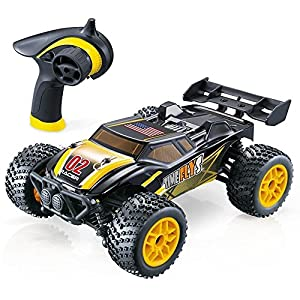 GPTOYS S607 All Terrain Remote Control Car - Splash Resistant, Fast 4 X 4 Off Road Electric RC Truggy, Hobby Grade 1/24 Scale - Best Gift for Boys & Girls and Even Adults