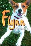 Flynn, Shannon Fox, 0595745482