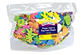 Colorations FFHB Flowers, Hearts & Bug Foam Shapes (Pack of 500)