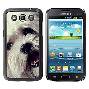 YiPhone /// Prima de resorte delgada de la cubierta del caso de Shell Armor - Havanese Bichon Frise White Small Dog - Samsung Galaxy Win I8550 I8552 Grand Quattro
