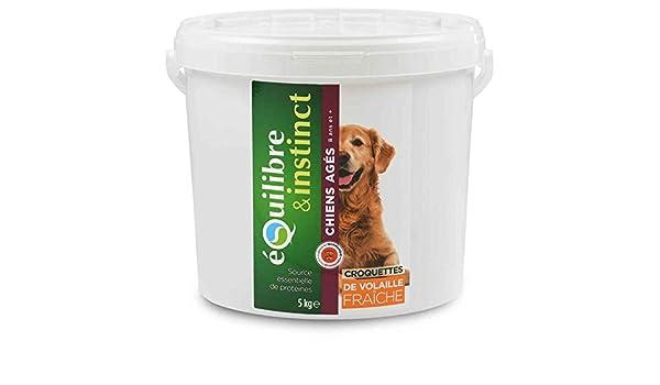 croquetas de carnes frescas a la Corral para perro âgé, cubo de 5 kg: Amazon.es: Productos para mascotas