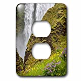 3dRose Danita Delimont - Waterfalls - Iceland, Seljalandsfoss Waterfall, Wildflowers - Light Switch Covers - 2 plug outlet cover (lsp_277518_6)