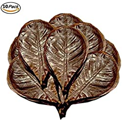 "10 Natural Shrimp Leaves by SunGrow (Giant Size 7""- 9""): Organic, Beautiful, Sun Baked Catappa Leaf that Provide Shelter, Food and Beneficial Tannins: Perfect for Breeding & Hiding"