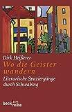 Wo die Geister wandern: Literarische Spaziergänge durch Schwabing (Beck'sche Reihe)