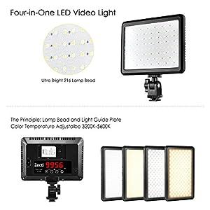 Zecti LED Video Light from Zecti