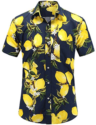 57e748dba61 JEETOO Men s Pineapple Shirts Hawaiian Style Short Sleeve Summer Casual