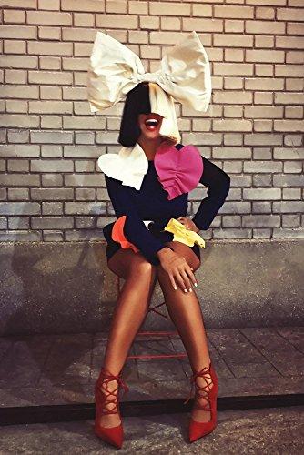 TST INNOPRINT CO Sia Hot Girl Legs Poster 24x36