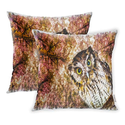 Emvency Set of 2 18x18 Inch Throw Pillow Covers Cases Brown Animal Beautiful Painting of Owl Eyes Drawing for Download Digital Avian Beak Case Cover Cushion Two Sided ()