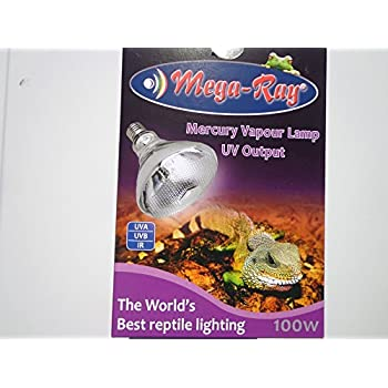 Amazon Com Mega Ray Mercury Vapor Bulb 100 Watts 120v