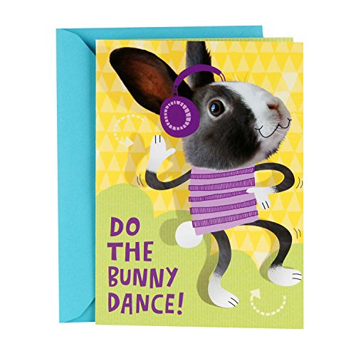 Hallmark Pop Up Easter Card for Kids (Displayable Dancing Bunny With Flowers) (Dancing Bunnies)