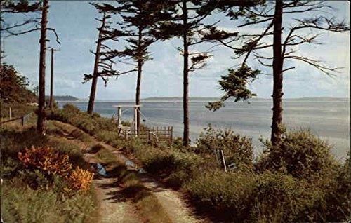 (Admiralty Inlet on Puget Sound, Whidbey Island Coupeville, Washington Original Vintage Postcard )