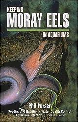Keeping Moray Eels in Aquariums