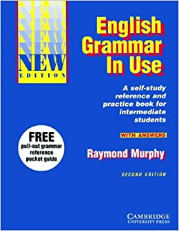 english grammar with answers pdf
