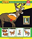 animal targets for shooting - Animals with Vital Organs Series - 19