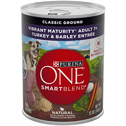Purina ONE Natural Senior Pate Wet Dog Food, SmartBlend Vibrant Maturity 7+ Turkey & Barley Entree - (12) 13 oz. Cans (Best Canned Dog Food For Senior Dogs)